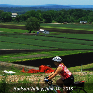 Hudson Valley, June 9-10, 2018 - Warwick Valley Winery, Warwick, NY